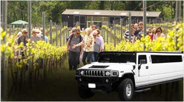 Wine Tours Vacaville