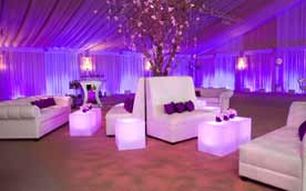 Event Decoration Service Petaluma